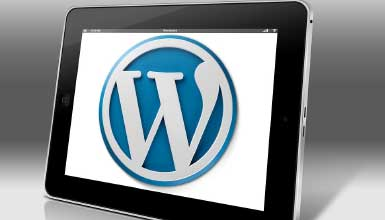Build Professional WordPress Website With  Elementor Page Builder Plugin – No Coding Required